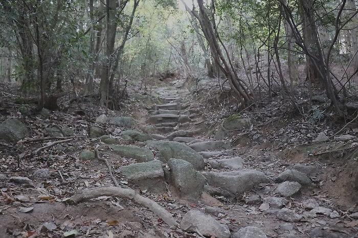 宝満山 登山道