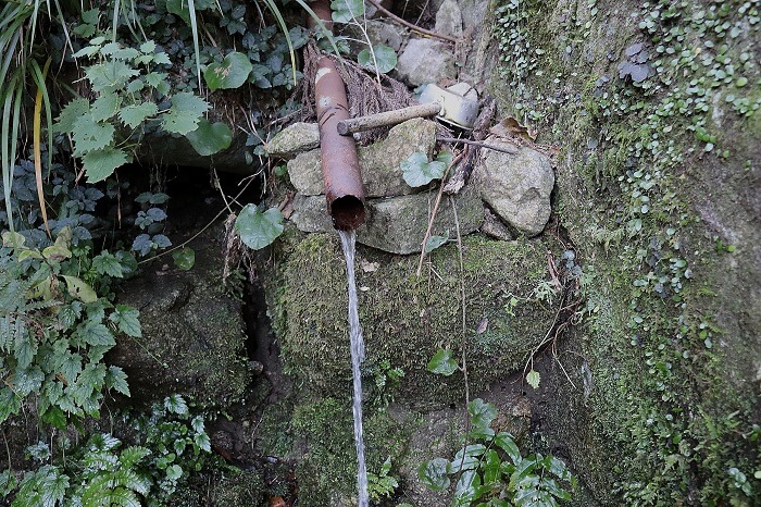 徳井の水場