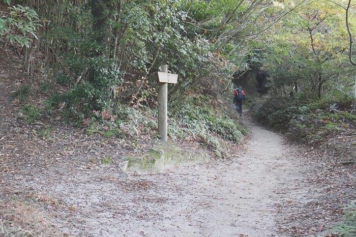 正面ルートの登山道