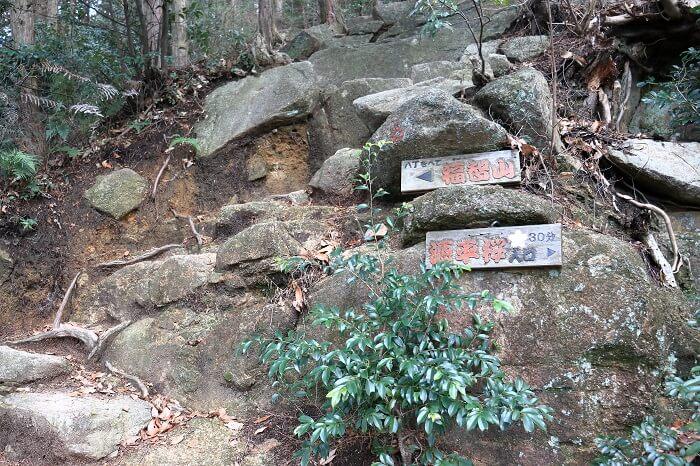 福智山と源平桜の分岐