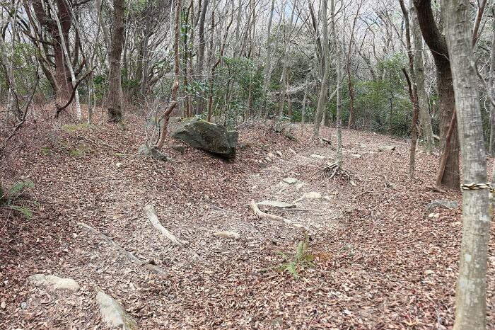 上野越えの登山道