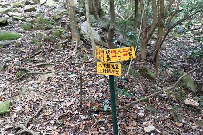 上野越ルートと八丁越ルートの分岐