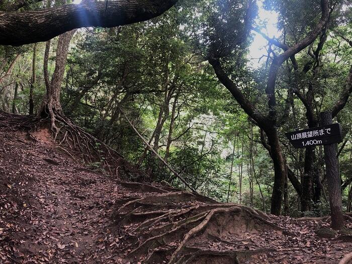 可也山 登山道2