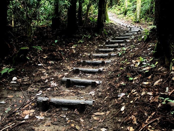 可也山 登山道3